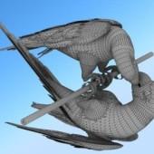Parrot Animals Free 3D Model
