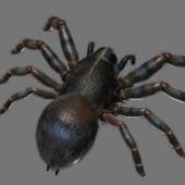 Black Ant Free 3dmax Model