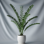 Free 3dmax Model Indoor Potted Plant