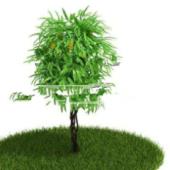 Free 3dmax Model Plants Park