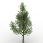 Green Trees Free 3dmax Model