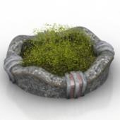 Grass Bonsai