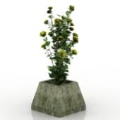Wildflowers Bonsai Free 3dmax Model