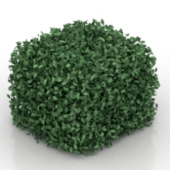 Square Leaves Free 3dmax Model