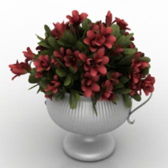 Beautiful Flower Pot