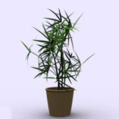 Indoor Bamboo Pot Free 3dmax Model