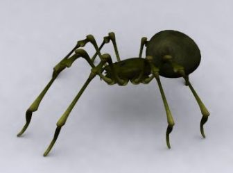 Green Spider Free 3dmax Model Animal
