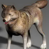 Animals Wolf Free 3dmax Model