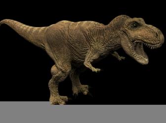 Animal Free 3dmax Model: Tyrannosaurus 3ds Max Free 3dmax Model Free