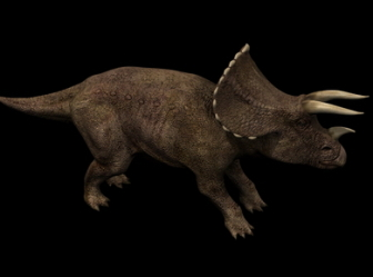 Triceratops Dinosaur 3ds Max Mod