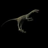 Carnivorous Dinosaur 3ds Max  Model