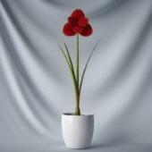 Interior Plant Simple Pot Free 3dmax Model