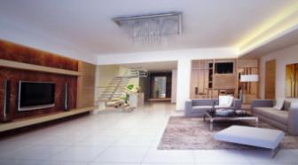 Minimalist Decorative Living Room