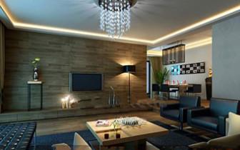 Modern Dark Business Living Room
