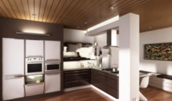 European-style Kitchen