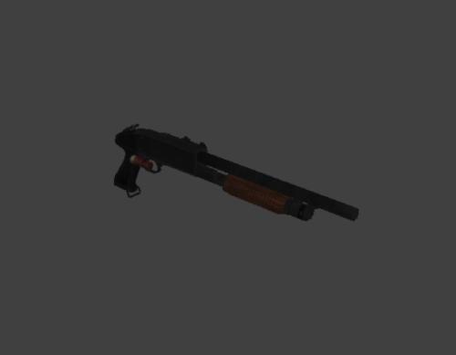 Shotgun With Bullet
