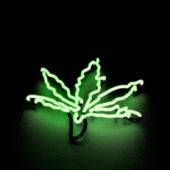 Pot Leaf Neon Light
