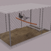Pigeons In Fence