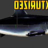 Rigged Shark