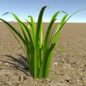 High Quality Grass