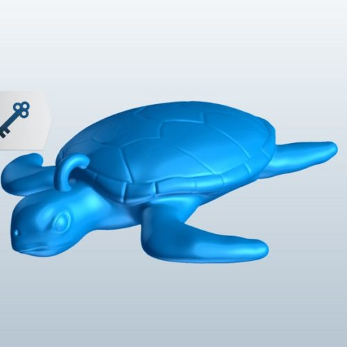 Turtle Lowpoly