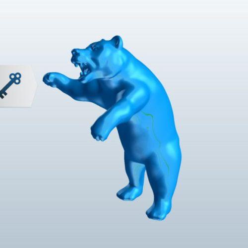 Wild Bear Roaring