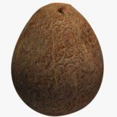 Coconut Whole V01