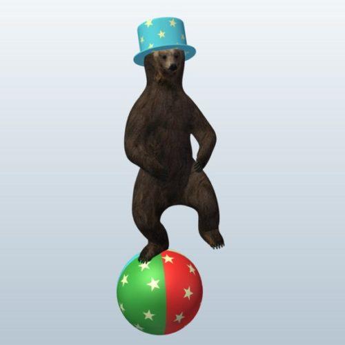 Circus, Bear With Ball
