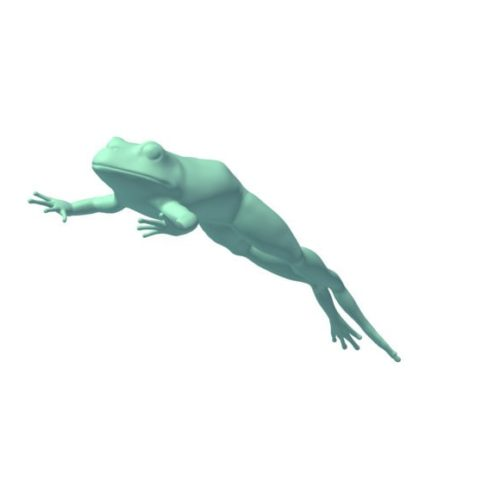 Frog Lowpoly