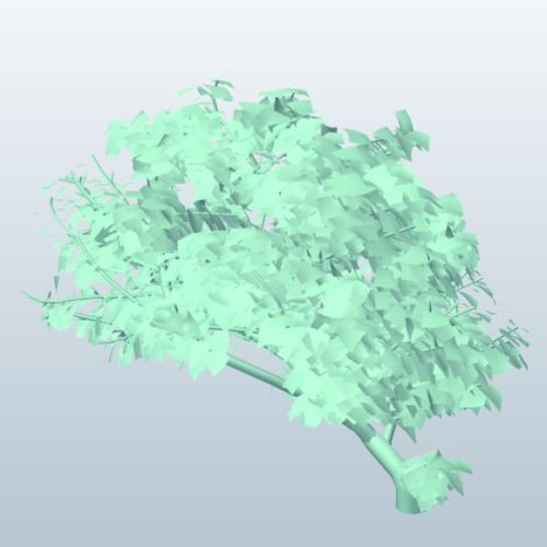 Treesketch Wildlife  Tree