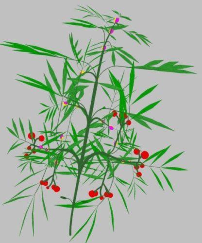 Landscape Flower 03