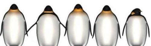 Penguins South Pole
