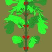 Tree Flower 01