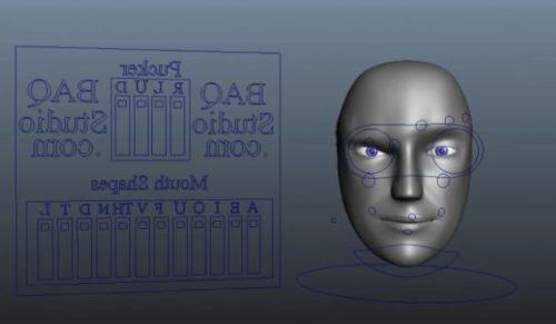 Robot Head Rig