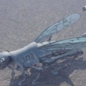 Apocaliptic Locust Drone