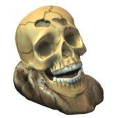 Aquarium Skull