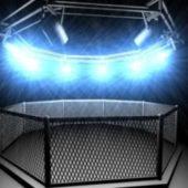 Electric Octogon Cage
