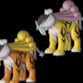 Raikou Pokemon Character