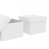 Simple White Cardboard Box