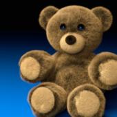 Mr Been Teddy Bear