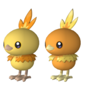 Torchic Pokemon Character