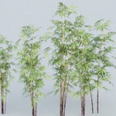 Bamboo Forest Tree
