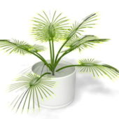 Nature Potted Palm Plant