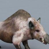 Brown Boar