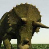 Pre-history Triceratops Dinosaur