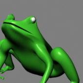 Green Frog Animal