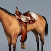 Western Horse With Saddle