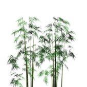 Bamboo Grove Bushes