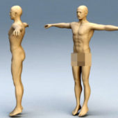 Character Adult Man Body