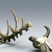 Animal Bones Skeleton